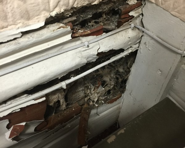Dry Rot decay Issues can be hidden In Barnsley read on for more information